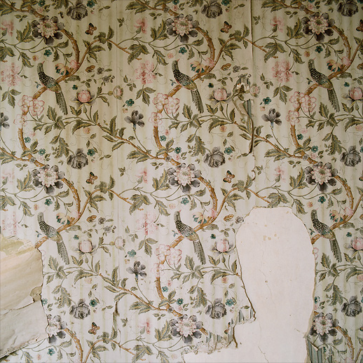 Second floor bedroom wall paper. Surpisingly intact! The room itself reeked of badger or fox droppings at Château Fossé, France.